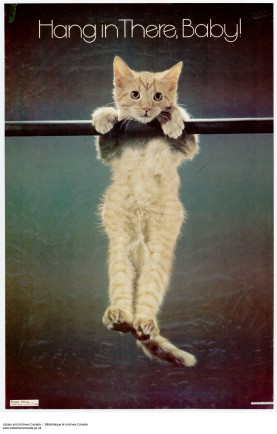 Historical Note: Kitten athletics were a highly popular and elite sport in the 1970's.