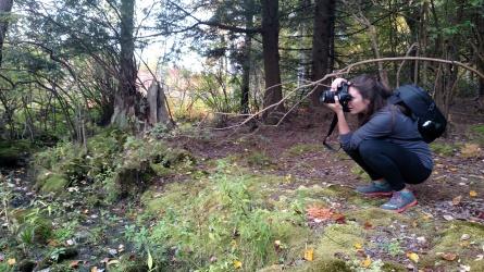Photogging