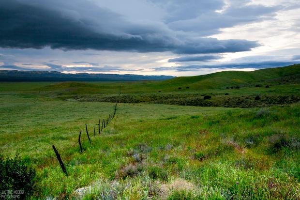 Carrizo-Plain-National-Monument-Hiking