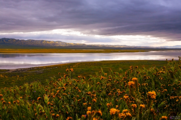 Soda-Lake-Carrizo-Plain-CA