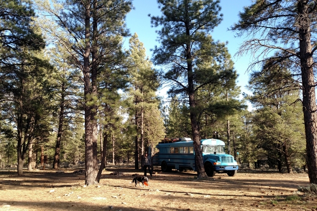 free camping at south rim of grand canyon