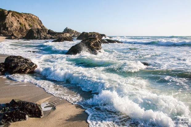 Bodega Headlands Beach Bodega Bay CA