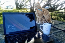 Morning work session with a great coworker.