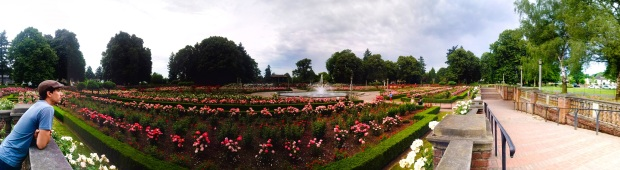 International Test Rose Garden Portland OR